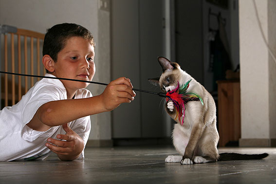 Haustiere Fur Kinder Welches Tier Passt